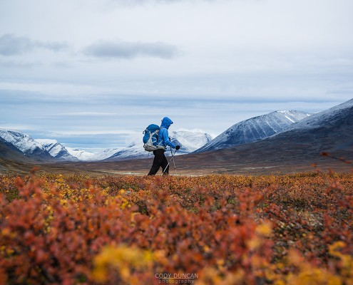 hiker with snow covered mountains and autumn colors in southern end of Tjäktjavagge on Kungsleden trail, Lappland, Sweden