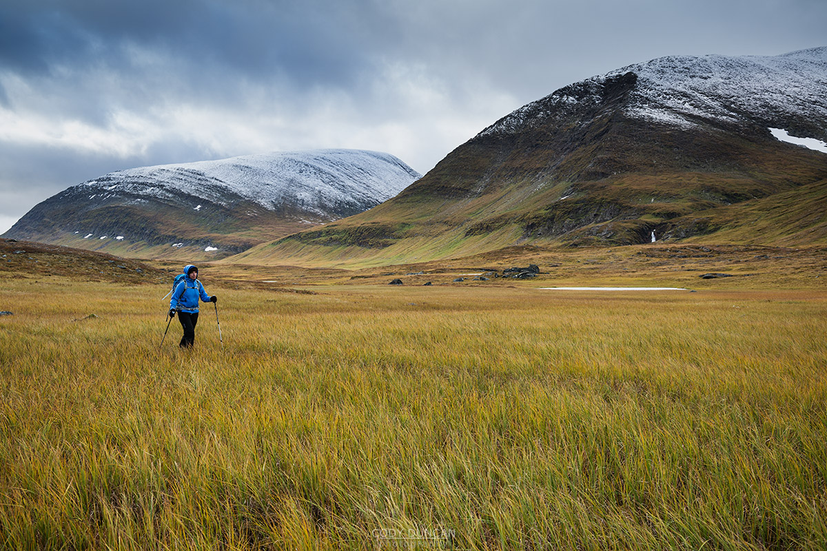 hiker hikes along Kunsleden trail north of Sälka mountain hut, Lappland, Sweden