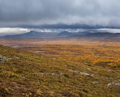 Kungsleden Trail Serve