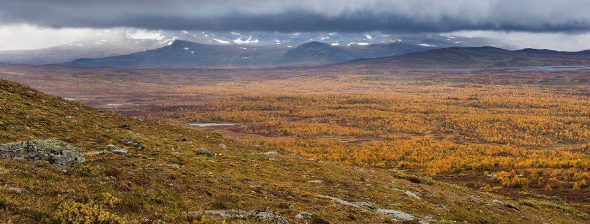 Kungsleden Trail Serve